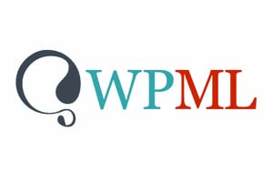 Terralíngua Partnership and Integration with WPML